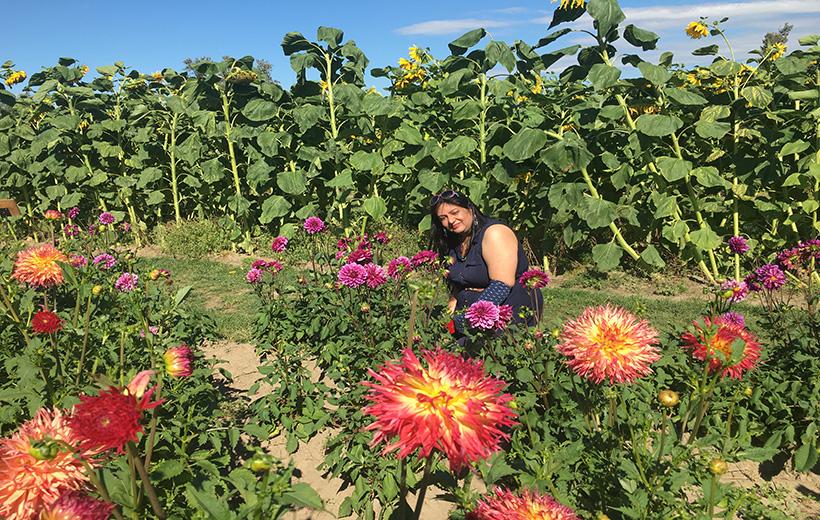 Flower festival Vancouver bc