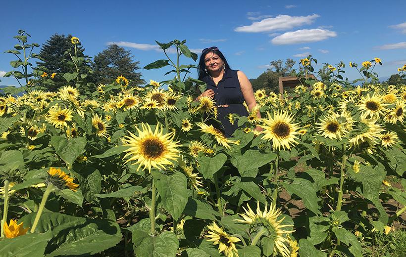 Vancouver sunflower festival